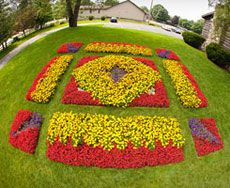 "Spring Amish ""Quilt garden"" Photo from a Ladder in Nappanee, Indiana"