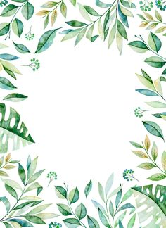 Texture with greens,branch,leaves,tropical. Framed Wallpaper, Wallpaper Backgrounds, Iphone Wallpaper, Watercolor Border, Watercolor Art, Baby Animal Drawings, Hawaiian Party Decorations, Invitation Background, Flower Frame