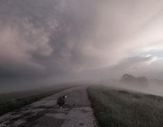 """Check out new work on my @Behance portfolio: """"After storm"""" http://be.net/gallery/38085429/After-storm"""