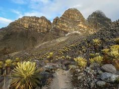 Parque Na ional El Cocuy. Colombia Sierra Nevada, Places To Travel, Places To Visit, South America Travel, My World, Cali, Monument Valley, Grand Canyon, Things To Do
