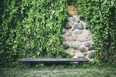 Reben bedeckt Wände sind eine großartige Kulisse für einen Ort der Entspannung oder eine Terrasse. Bei Reben Ziegel und Stein Wände decken hinterlassen sie oft kleinen Lücken in den Weinbergen, wo man sehen kann, die Wand, Erstellen von großer Tiefe und Textur.