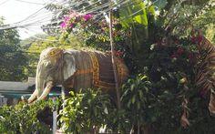 Quoi faire à Chiang Mai pendant 3 jours : mon top 5