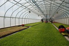 Barsuglia Farms in Vineland, New Jersey operates a Rimol Greenhouses High Tunnel to grow organic fruits and vegetables