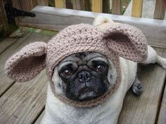 Dog Hat  Church Mouse / Made to Order by Sweethoots on Etsy, $20.00