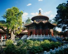 Discover China's years history by visiting the most top cities in China - imperial palaces, hutongs and Terracotta Warriors. After enjoy the natural beauty on the splendid Yangtze Three Gorges Cruise, tours ends at Shanghai. Three Lakes, Visit China, Summer Palace, Beijing China, Imperial Palace, Royal Garden, China Travel, China Trip, Kaiser
