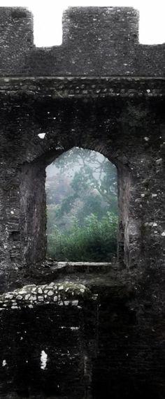 Peeking at the forest, window of Restormel castle, Cornwall, England.