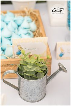 Water Can Planter from a Peter Rabbit Birthday Party via Kara's Party Ideas | KarasPartyIdeas.com (13)