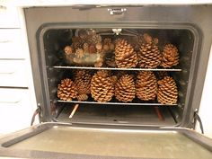 Before bringing Pine Cones into your house for crafts, REMEMBER to Bake the Bugs Out of them first! Preheat Oven to 200 Degrees and Bake Pine Cones for 45 Minutes! (Spread your pine cones out and dont bake all at once like in this picture. It works bet Christmas Hacks, Noel Christmas, Winter Christmas, All Things Christmas, Winter Holidays, Pine Cone Christmas Tree, Christmas Gifts, Natural Christmas, Homemade Christmas