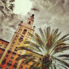Miracle Mile Miami Fl Explore Miami Pinterest Coral