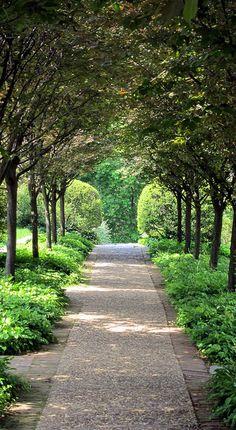 Bronze tree archway, Dumbarton Path