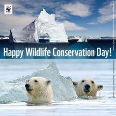 Happy Wildlife Conservation Day,  4 December!