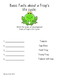 All About Frogs from Mrs. Cami Scott on TeachersNotebook.com (19 pages)