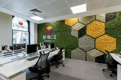 A Nordik Moss Wall with a difference! Coloured hexagons make this wall unique and stylish.