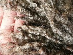 Selling Wool as a Homestead Business: Natural Fiber as a Cottage Industry