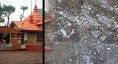 What makes MC Shimla the worst govt department?