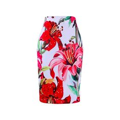 Western fashion Red flowers striped print women pencil skirts M-XXL fashion ladies bodycon saias girls faldas slim bottoms Pencil Skirt Casual, Printed Pencil Skirt, Pencil Skirts, Women's Skirts, Short Skirts, Flower Fashion, Skirt Fashion, Fashion Shoot, Fashion Dresses
