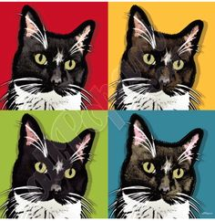 #Romeo My Sweet Sister, Cat Heaven, Colorful Wallpaper, Andy Warhol, Happy Birthday Me, Pop Art, Wallpapers, Music, Painting