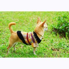 Cute Dog Clothes Handmade crochet Striped Rustic Soft Cotton Pet Sweater Clothing DK826 - free shipping