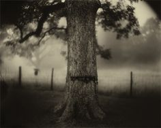 Sally Mann, my favorite photographer