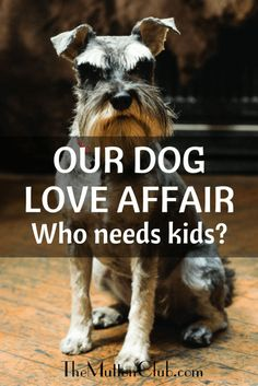 Avril Broadley never wanted a child and is delighted her gorgeous dog fills the hole in her life more usually reserved for one.