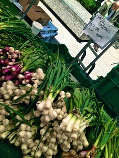 spring onions ~ #Chicago #vegetables #food #nutrition #healthyeating