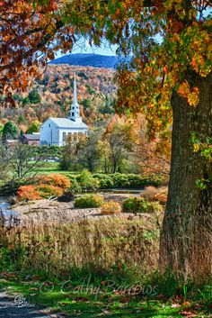 Cathy Barrows Photography | New England