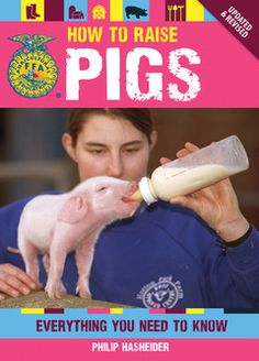 How to Raise Pigs: Everything You Need to Know. (Breeding, housing, feeding, healthcare, showing, marketing, and butchering.) #homestead #livestock #farm