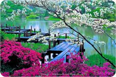 Bridge over peaceful water