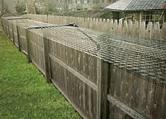 Cat Proof Backyard. Attach to fence so cats cant leave your yard. They cant climb up or over it. It doesnt hurt them either.