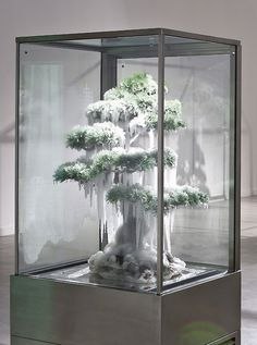 Azuma Makoto, Frozen Pine, 2011