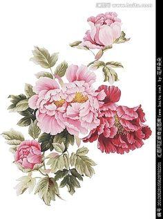 Jin Hongjun 1937 Traditional Chinese painter Flora t Chinese Painting Flowers, Chinese Flowers, Peony Painting, Japanese Flowers, Watercolor Flowers, Japanese Drawings, Japanese Art, Botanical Flowers, Botanical Art