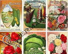 Seed Packet, Flower and Veg etable Garden , COLLAGE BARGAIN Scrapbook ...