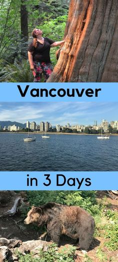 Planning on visiting Vancouver but short on time? Don't worry, here are my tips for what to do and see with 3 days in Vancouver. Vancouver Vacation, Visit Vancouver, Vancouver Travel, Vancouver City, Vancouver Island, Granville Island Vancouver, Stanley Park Vancouver, Vancouver Skyline, Vancouver British Columbia
