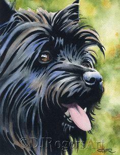 Black CAIRN TERRIER Art Print Signed by Watercolor Artist DJ Rogers