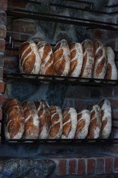 "https://flic.kr/p/6ASgM9 | Boulangerie fol epi | ""Foli epi"" means wild wheat stalk... This morning's bread. Dockside Green, Vic West, Victoria BC Canada"