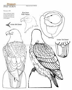 #912 Bald Eagle Carving - Wood Carving Patterns - Wood Carving