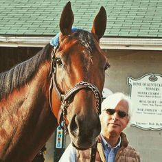 2015 Kentucky Derby winner American Pharoah and his Trainer Bob Baffert