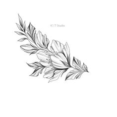 Tattoos For Women Flowers, Beautiful Flower Tattoos, Foot Tattoos For Women, Star Tattoo Designs, Henna Tattoo Designs, Flower Tattoo Designs, Vine Foot Tattoos, Star Tattoos, Tatoos