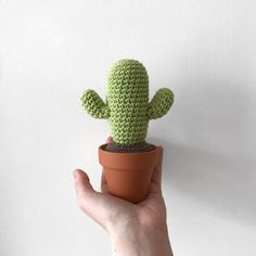 In this 4 part mini series I will be giving you 4 detailed posts on how to make your own variations of Cacti. This pattern is for the Desert Cactus. These cacti patterns are also incredibly adaptiv…