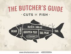 Cut of meat set. Poster Butcher diagram and scheme - Fish. Vintage typographic hand-drawn. Vector illustration - stock vector