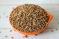 Are Soaking Grains & Legumes Necessary & How To Properly Soak & Prepare Them!
