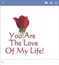 Você é o amor da minha vida - citações do amor no Facebook chat.  Diga o que você ama o quão importante eles realmente são!