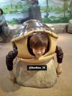 BamBam turtle heheh so cute :)) #Got7