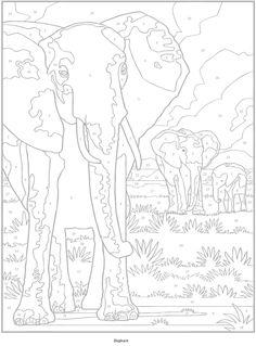 2 olifant
