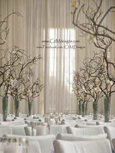 """""""Forest"""" of manzanita branches with phalenopsis orchids arranged in pilsner vases.  Designed by: Christine McCaffery. www.c2mdesigns.com"""