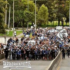 Barra Brava Photos (@barrabravphotos) | Twitter