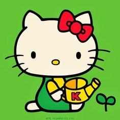 Have fun   take the sun  -) Hello kitty world. photooftheday line cat  gattino carino 348efa9654f86