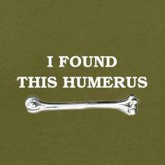 anatomy humer...us