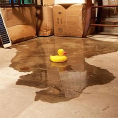 8 ways to diagnose and fix a wet basement.