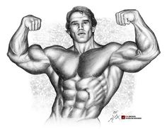 IRON Arnold Schwarzenegger HB pencil on A4 paper #dkboss7 #Schwarzenegger #arnold #bodybuilding